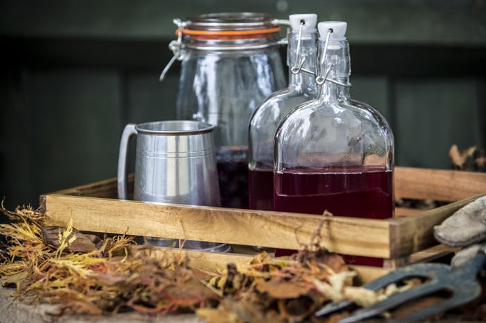 Goodbye Summer, Hello Sloe Gin