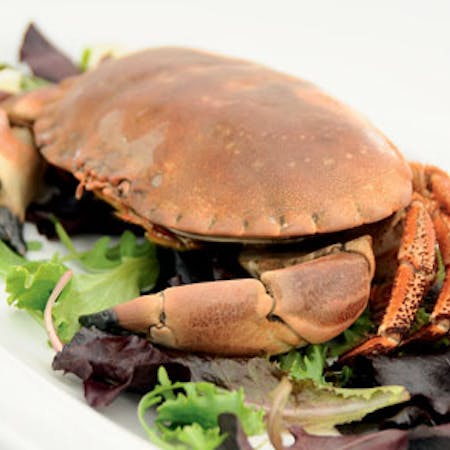 How to prepare a crab