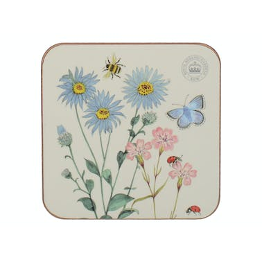 Kew Gardens Meadow Bugs Pack Of 6 Premium Coasters