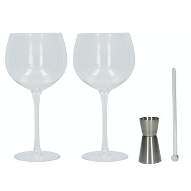 Creative Tops Ava & I Gin Goblet Set