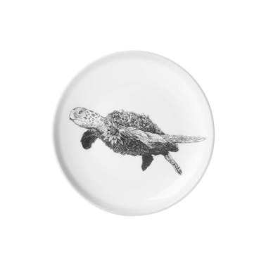Maxwell & Williams Marini Ferlazzo 20cm Sea Turtle Plate