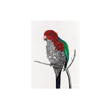 Maxwell & Williams Marini Ferlazzo Australian King Parrot Tea Towel