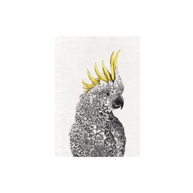 Maxwell & Williams Marini Ferlazzo Sulphur-crested Cockatoo Tea Towel