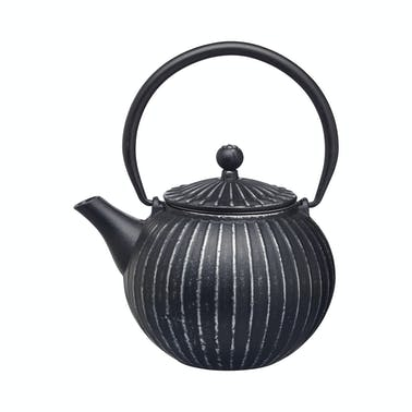 Le'Xpress Japanese Kettle / Tetsubin Teapot (500 ml)